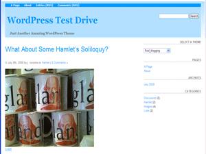 Fluid Blogging wordpress theme