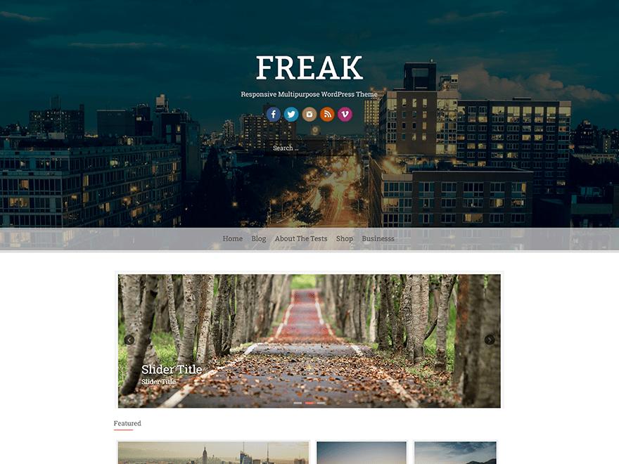 FREAK Business, Portfolio, Biographie, Blog