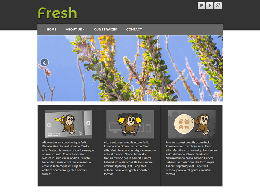 Fresh Lite free wordpress theme