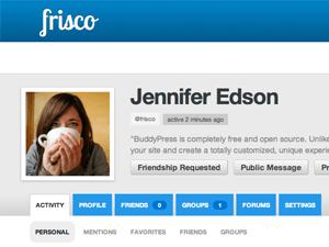 Frisco for BuddyPress wordpress theme