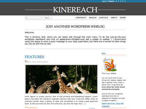 Front Page wordpress theme