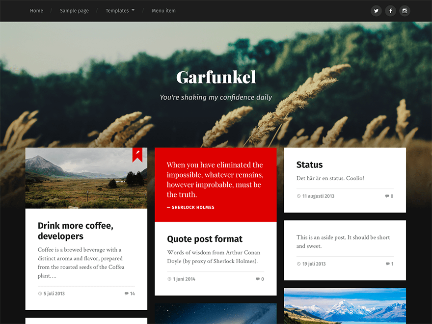 WordPress тема: Garfunkel