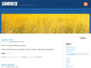Grain free wordpress theme