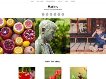 Hanne child theme