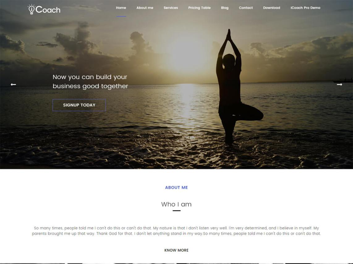 icoach themes search engine friendly premium quality theme for individuals like coaches lancers yoga teachers doctors consultants designers etc