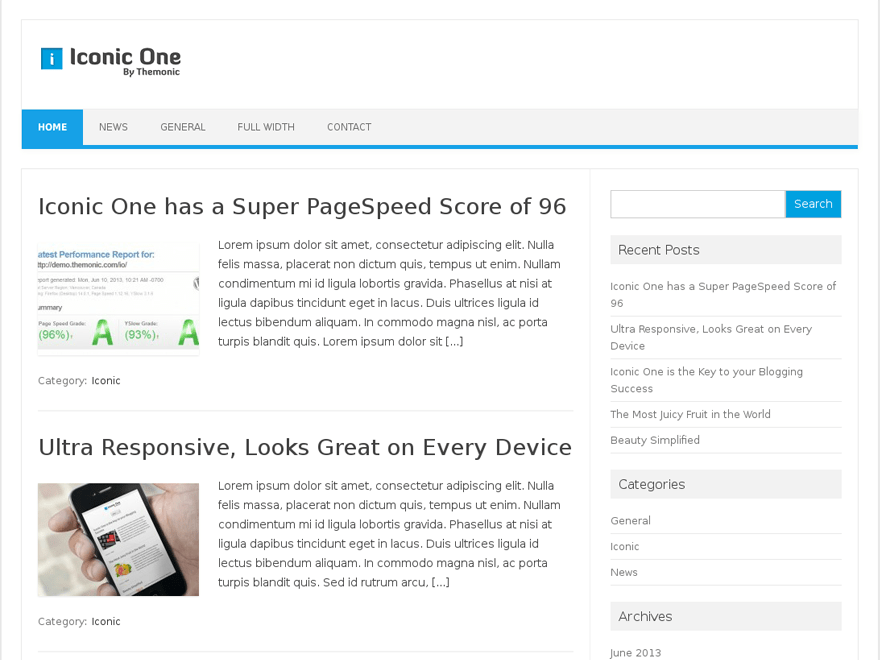 Iconic One free wordpress theme
