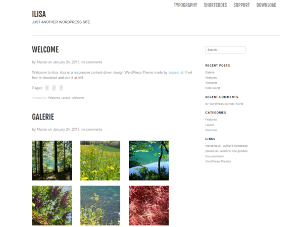 Ilisa free wordpress theme