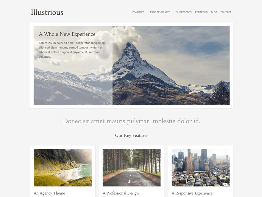 Illustrious free wordpress theme