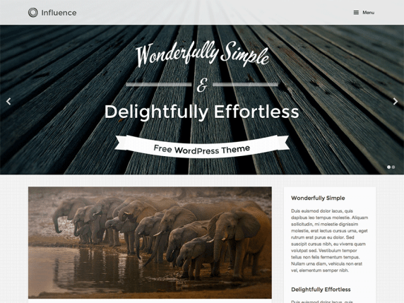Influence wordpress theme