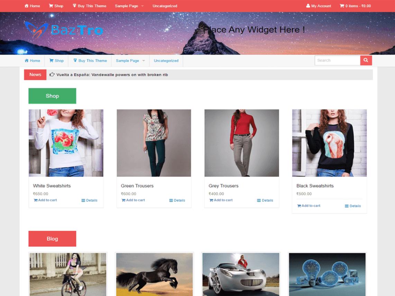ecommerce themes wordpress free
