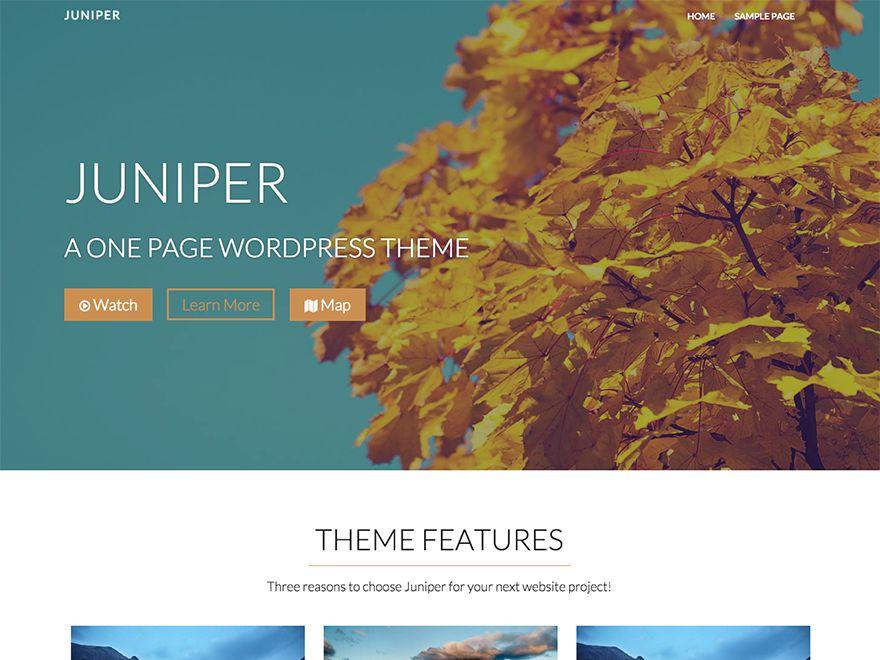 Juniper free wordpress theme