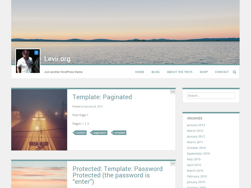 Levii free wordpress theme