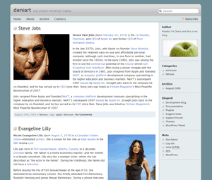 Librio free wordpress theme
