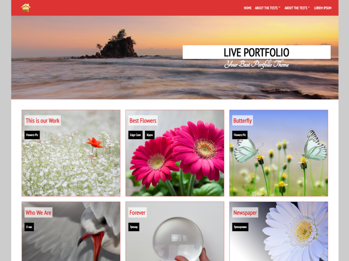 Live Portfolio Theme Free Download