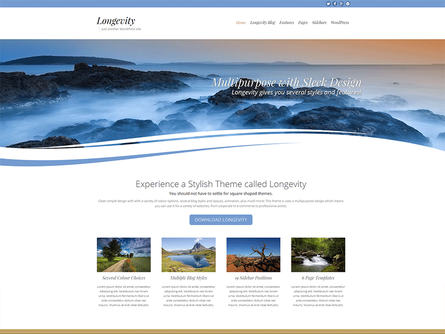 Longevity free wordpress theme