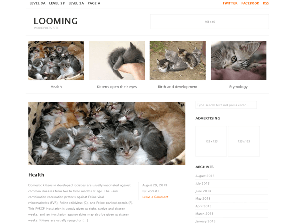 looming free wordpress theme