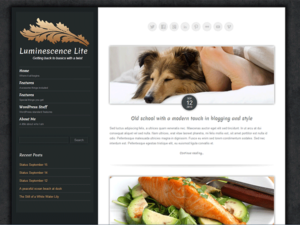 Luminescence Lite free wordpress theme