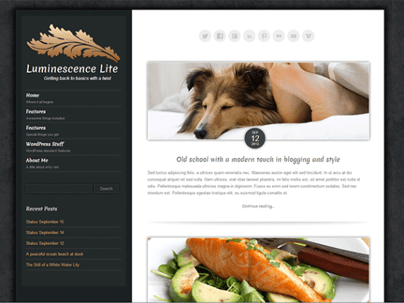 Luminescence Lite wordpress theme