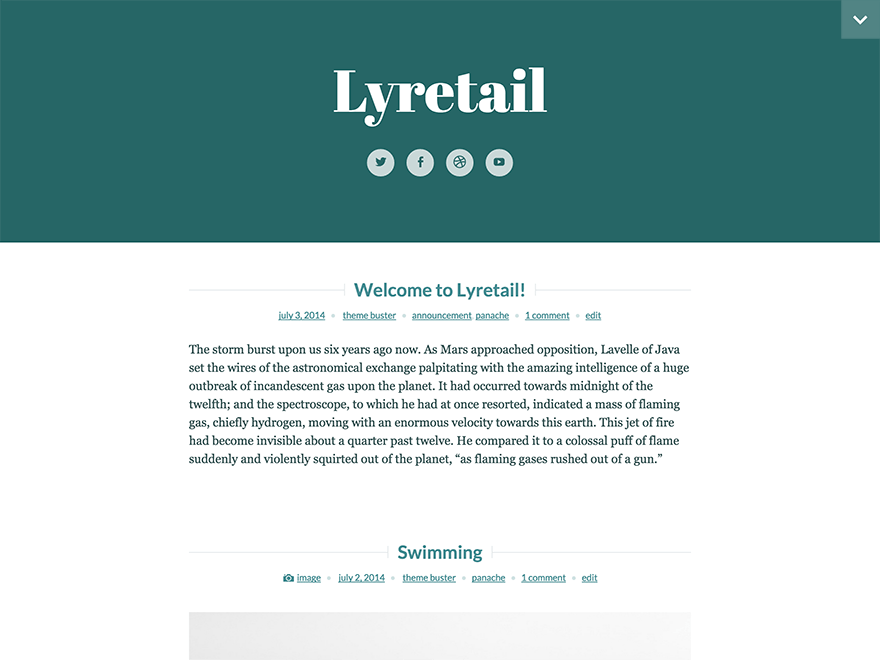 Lyretail free wordpress theme