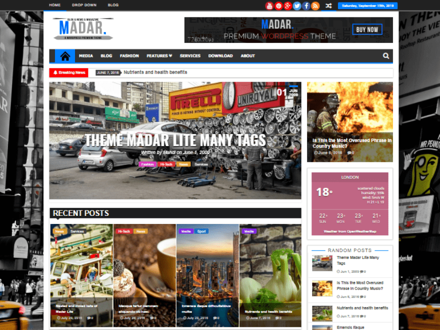 Madar Lite WordPress Theme download