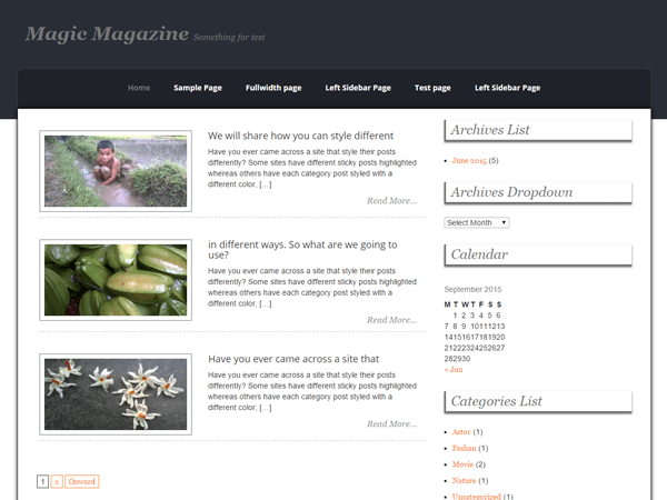 Magic Magazine free wordpress theme