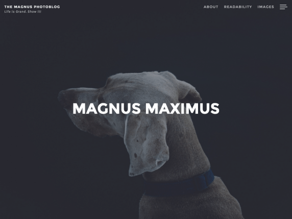 Magnus wordpress theme