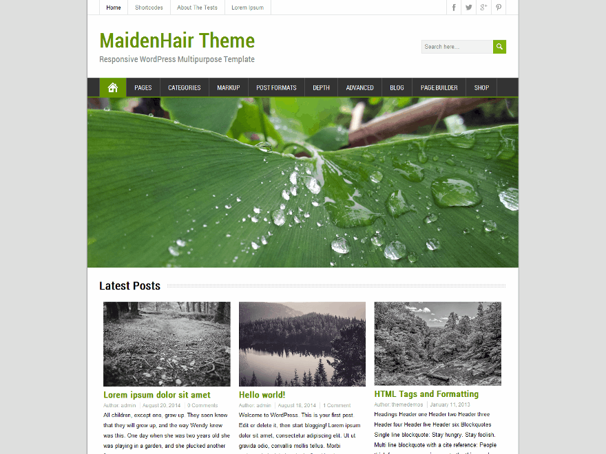 MaidenHair free wordpress theme