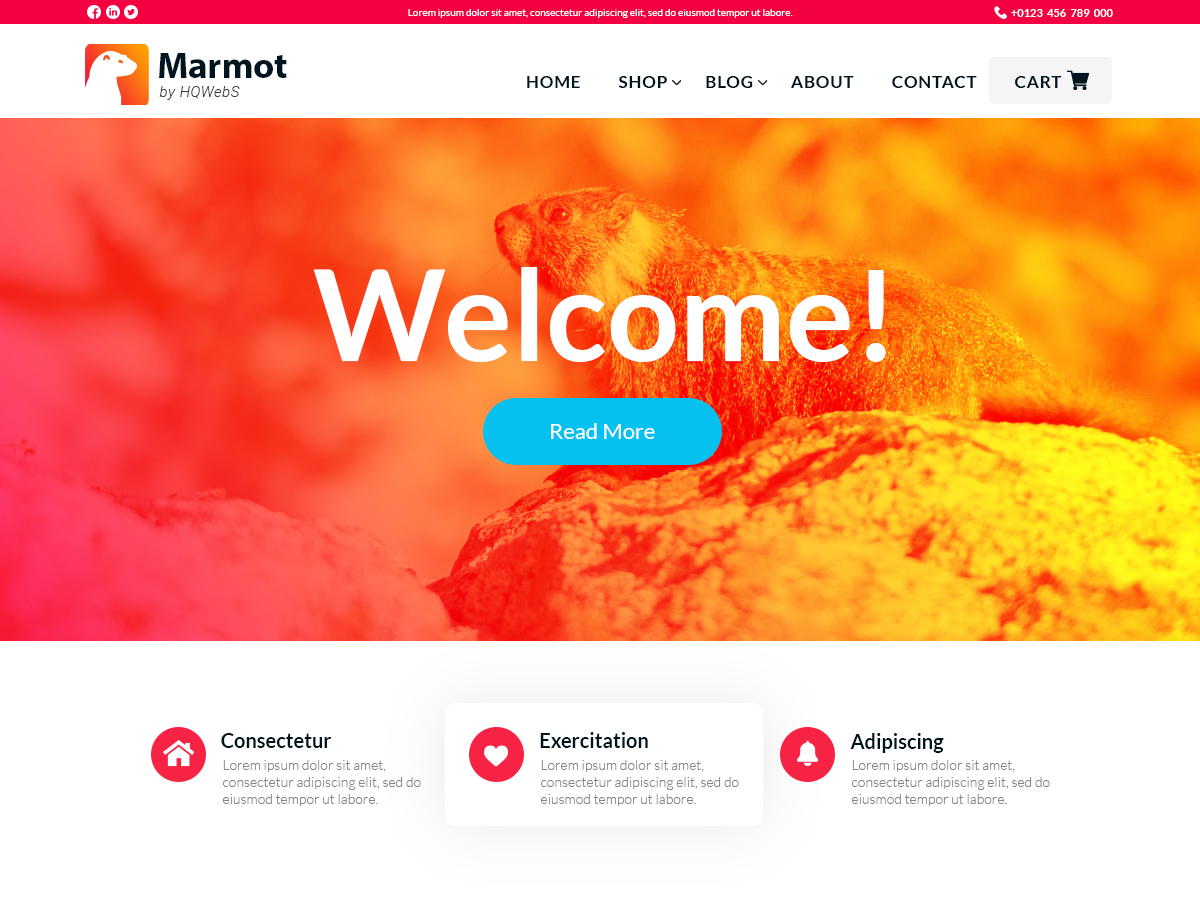 WordPress主题:Marmot
