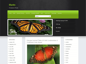 Martin wordpress theme