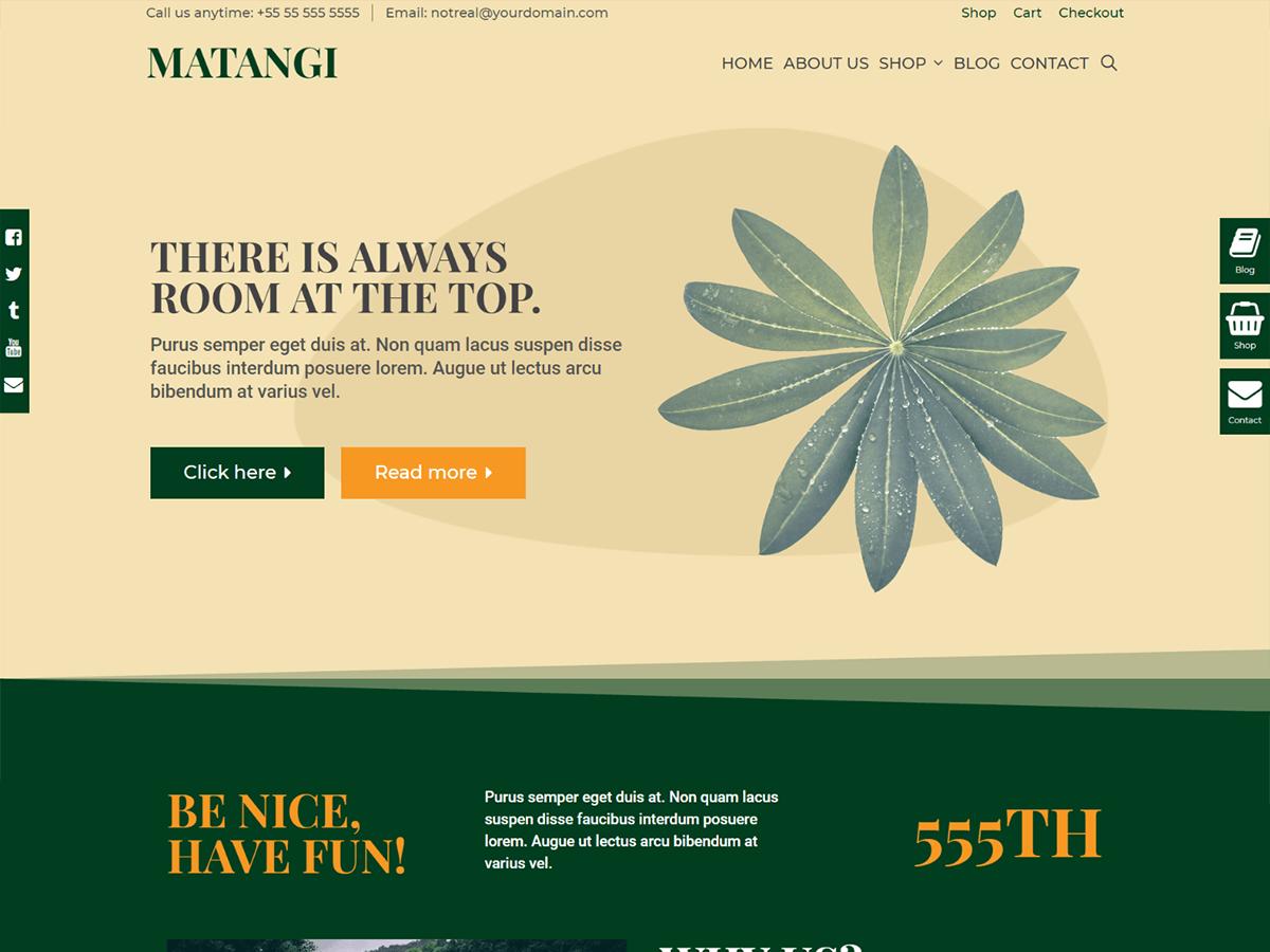 WordPress主题:Matangi