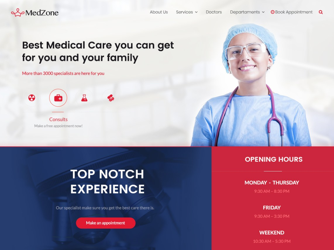 MedZone Lite Theme Free Download