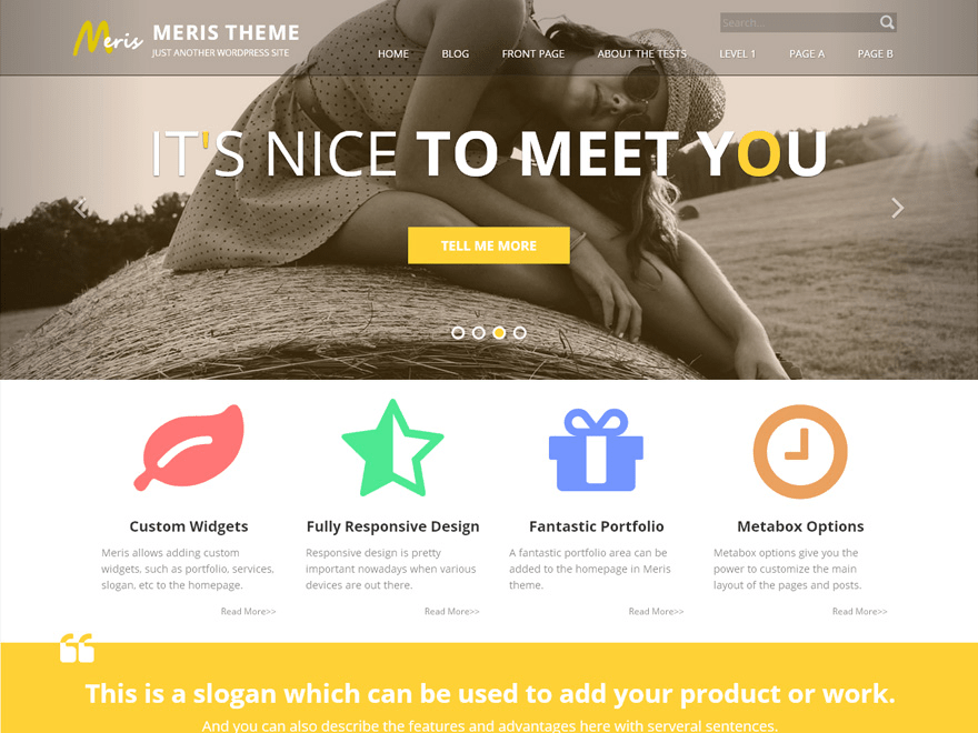 Meris free wordpress theme