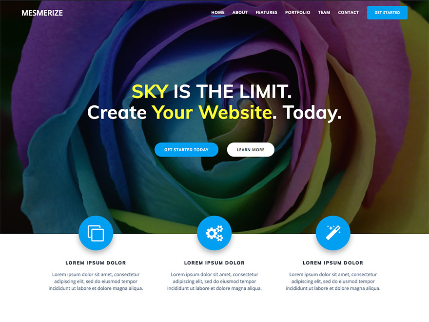 Download Mesmerize WordPress Theme