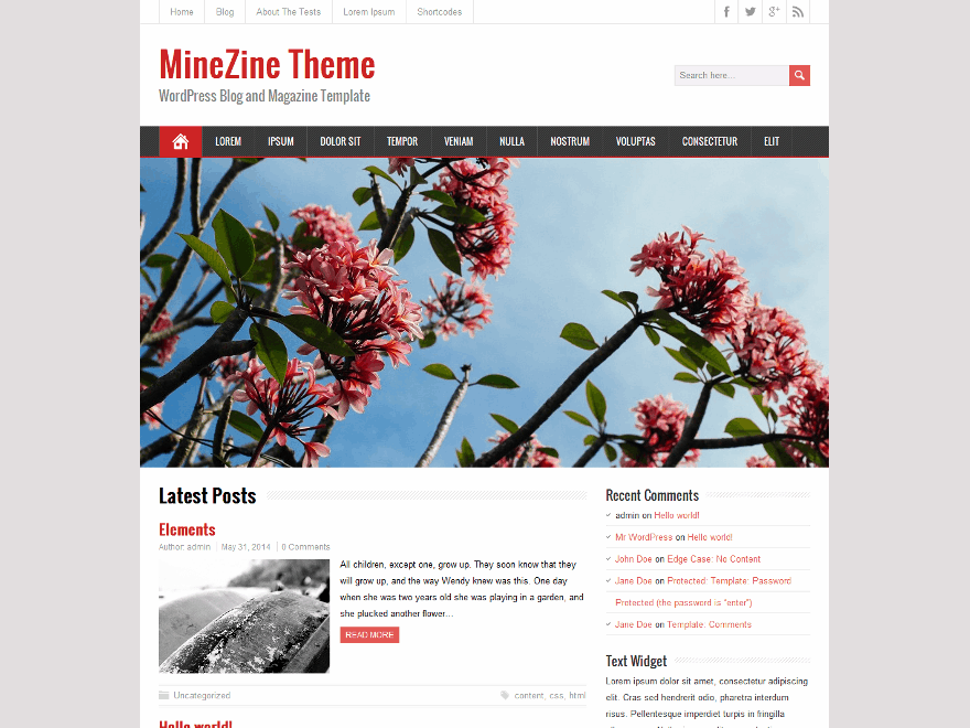 MineZine free wordpress theme