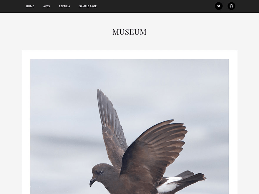 Museum free wordpress theme
