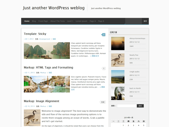 MxS wordpress theme