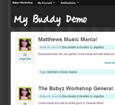 My BuddyPress wordpress theme