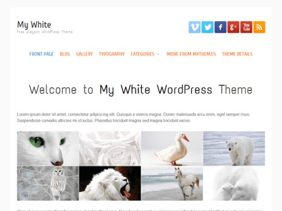 my white wordpress theme