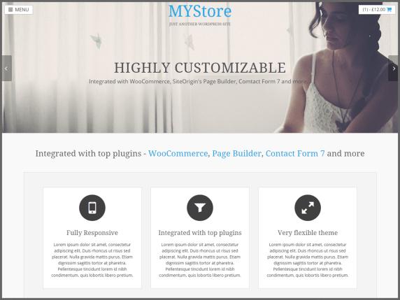 myStore wordpress theme
