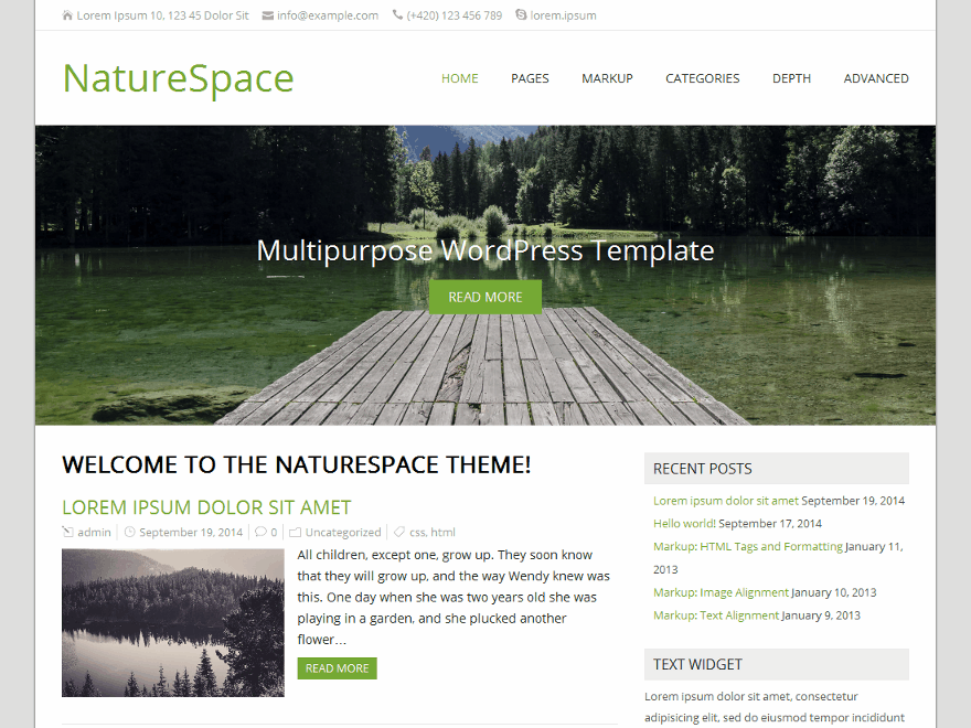 NatureSpace free wordpress theme