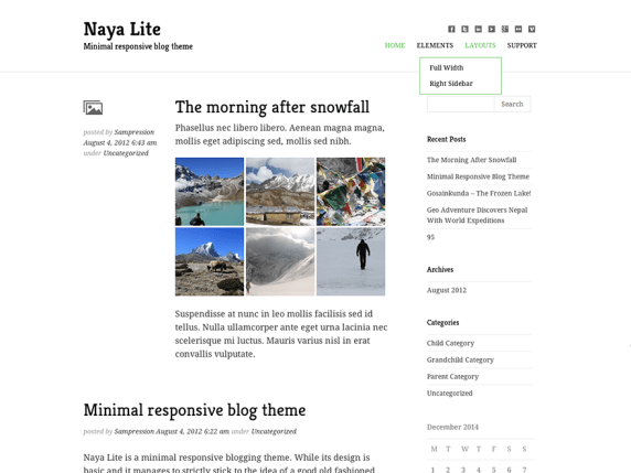 Naya Lite wordpress theme
