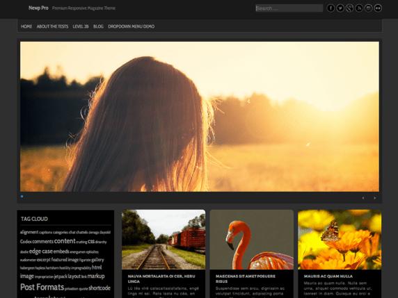 Newp wordpress theme