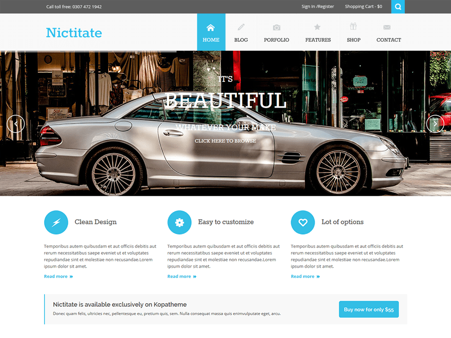 Nictitate free wordpress theme
