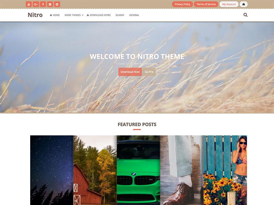 Nitro — Free WordPress Themes