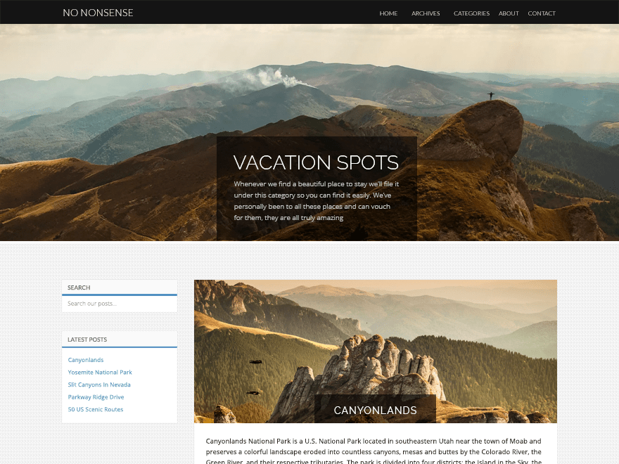 No Nonsense free wordpress theme