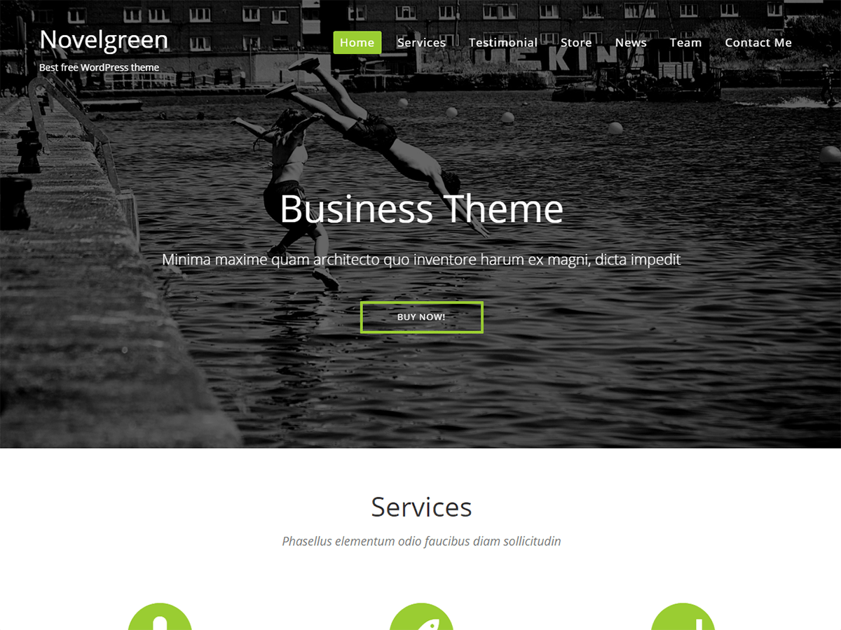 NovelGreen free wordpress theme