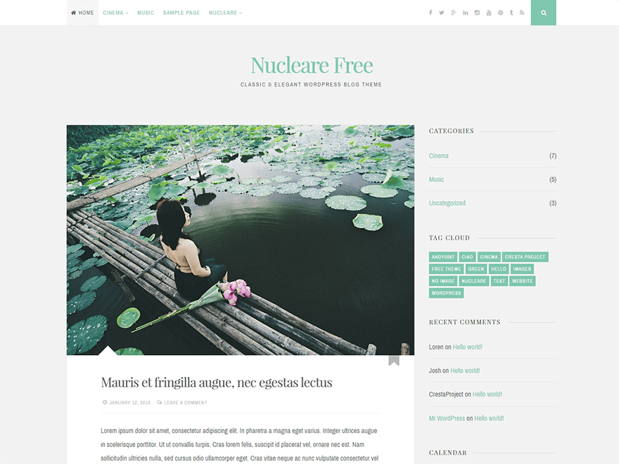 Nucleare free wordpress theme