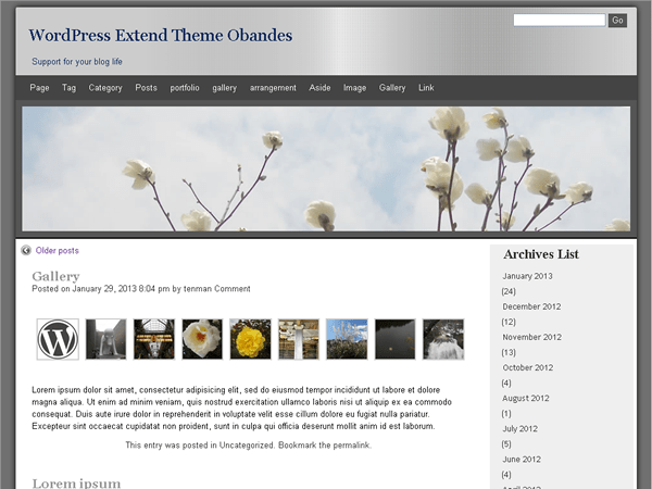 obandes free wordpress theme