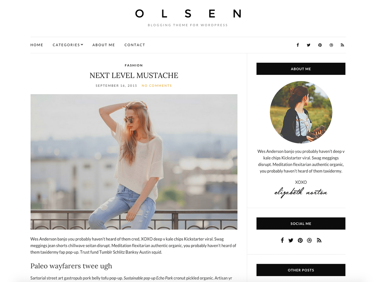 Olsen Light free wordpress theme