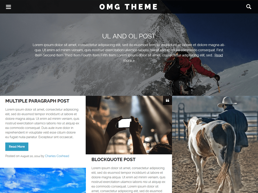 Omg wordpress theme